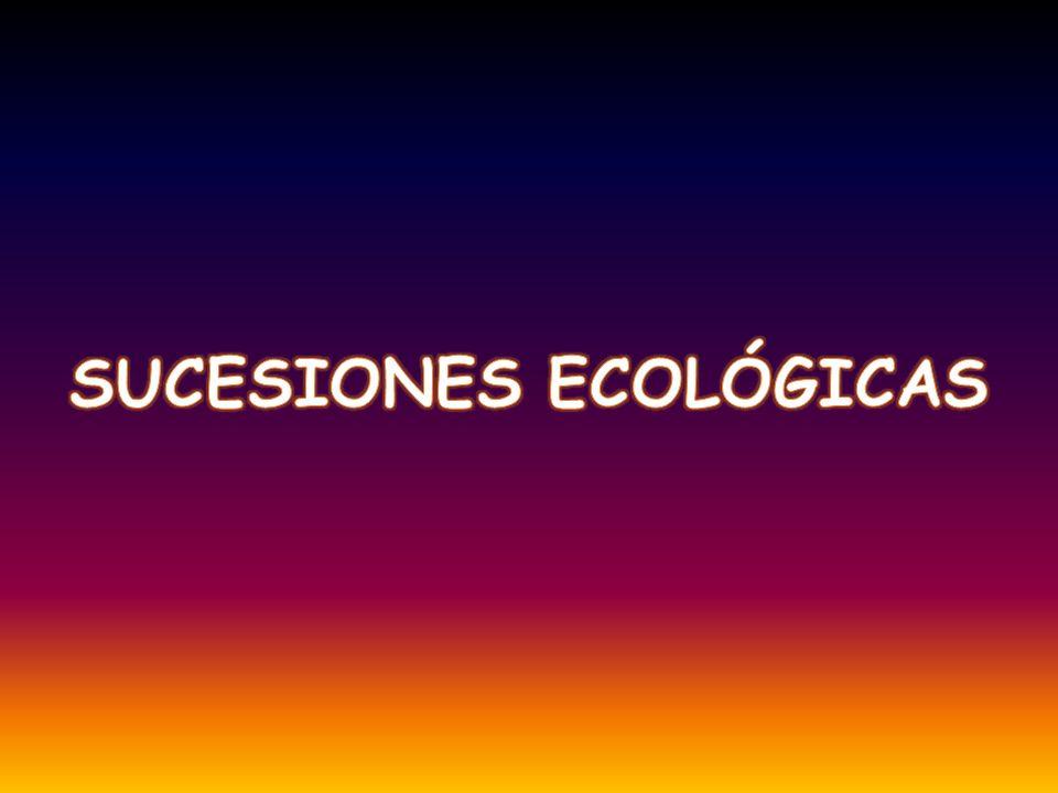 Una sucesión ecológica es un proceso dinámico por el que unas poblaciones son sustituidas por otras nuevas que crean relaciones más complejas dentro del ecosistema y que le confiere mayor estabilidad en el transcurso del tiempo.