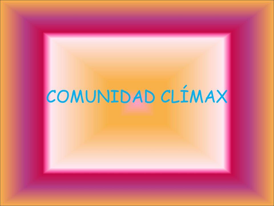 COMUNIDAD CLÍMAX