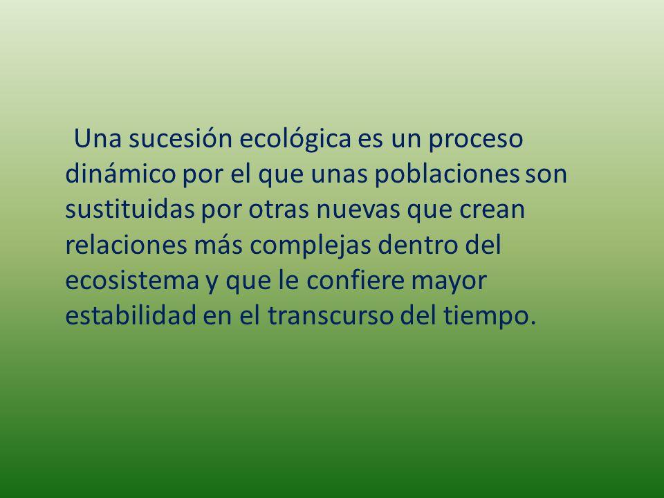 Una sucesión ecológica es un proceso dinámico por el que unas poblaciones son sustituidas por otras nuevas que crean relaciones más complejas dentro d