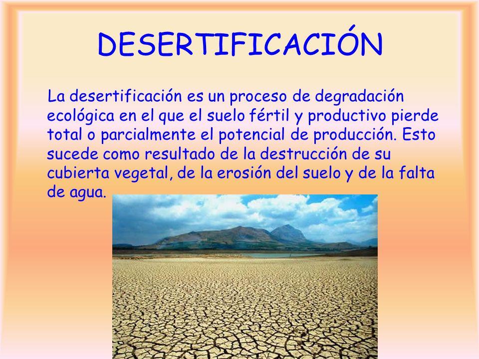 DESERTIFICACIÓN La desertificación es un proceso de degradación ecológica en el que el suelo fértil y productivo pierde total o parcialmente el potenc