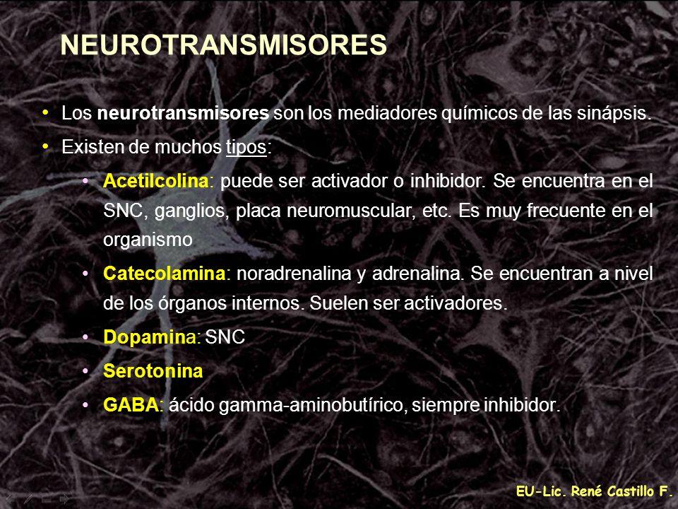 EU-Lic. René Castillo F. NEUROTRANSMISORES Los neurotransmisores son los mediadores químicos de las sinápsis. Existen de muchos tipos: Acetilcolina: p