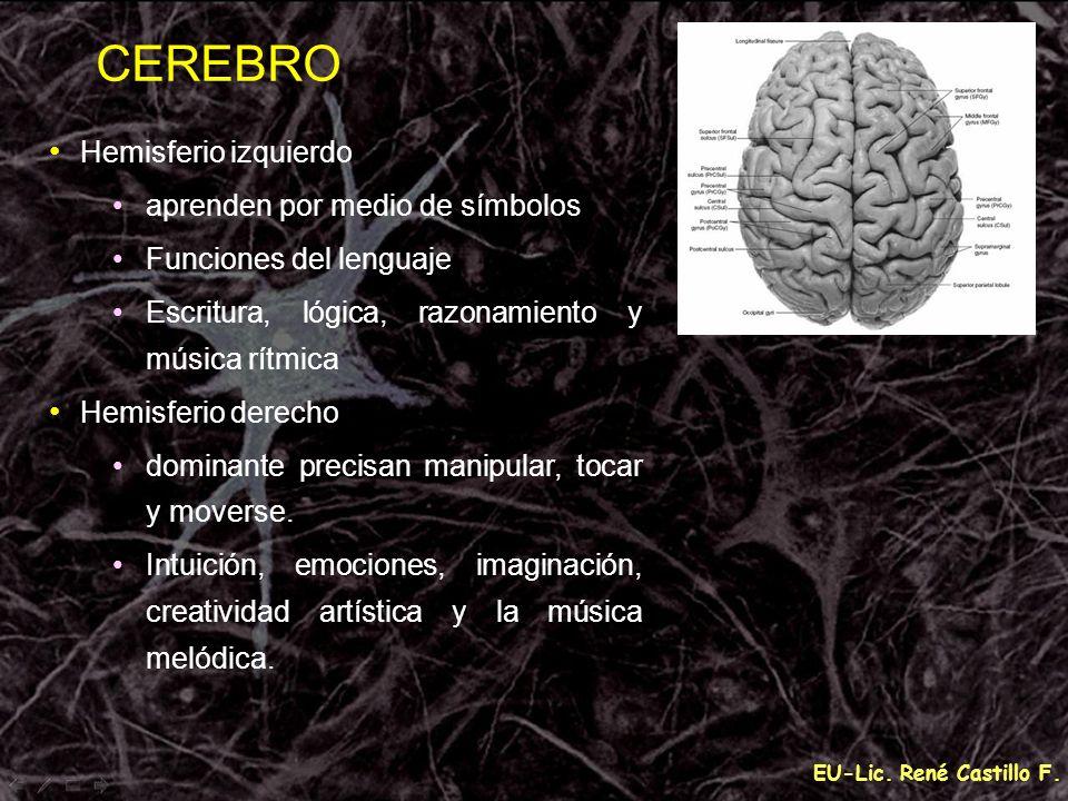 EU-Lic. René Castillo F. CEREBRO Hemisferio izquierdo aprenden por medio de símbolos Funciones del lenguaje Escritura, lógica, razonamiento y música r