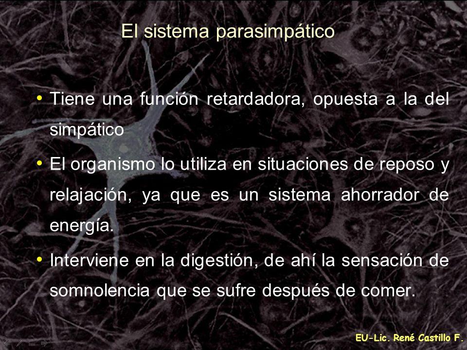 EU-Lic. René Castillo F. El sistema parasimpático Tiene una función retardadora, opuesta a la del simpático El organismo lo utiliza en situaciones de