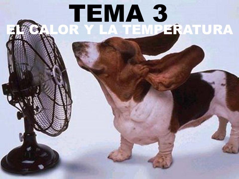 TEMA 3 EL CALOR Y LA TEMPERATURA