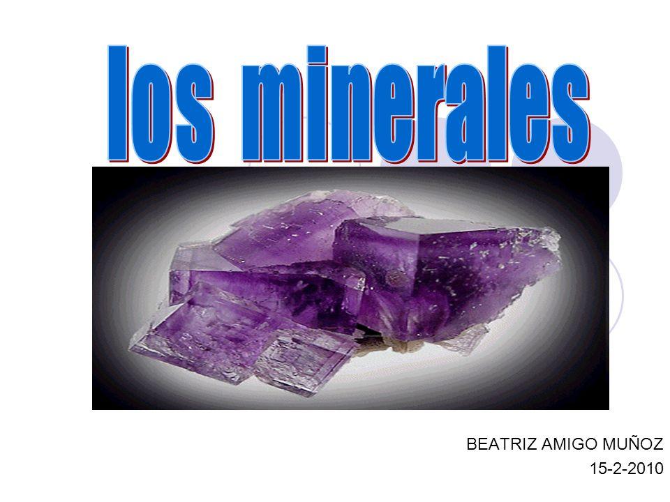 BEATRIZ AMIGO MUÑOZ 15-2-2010