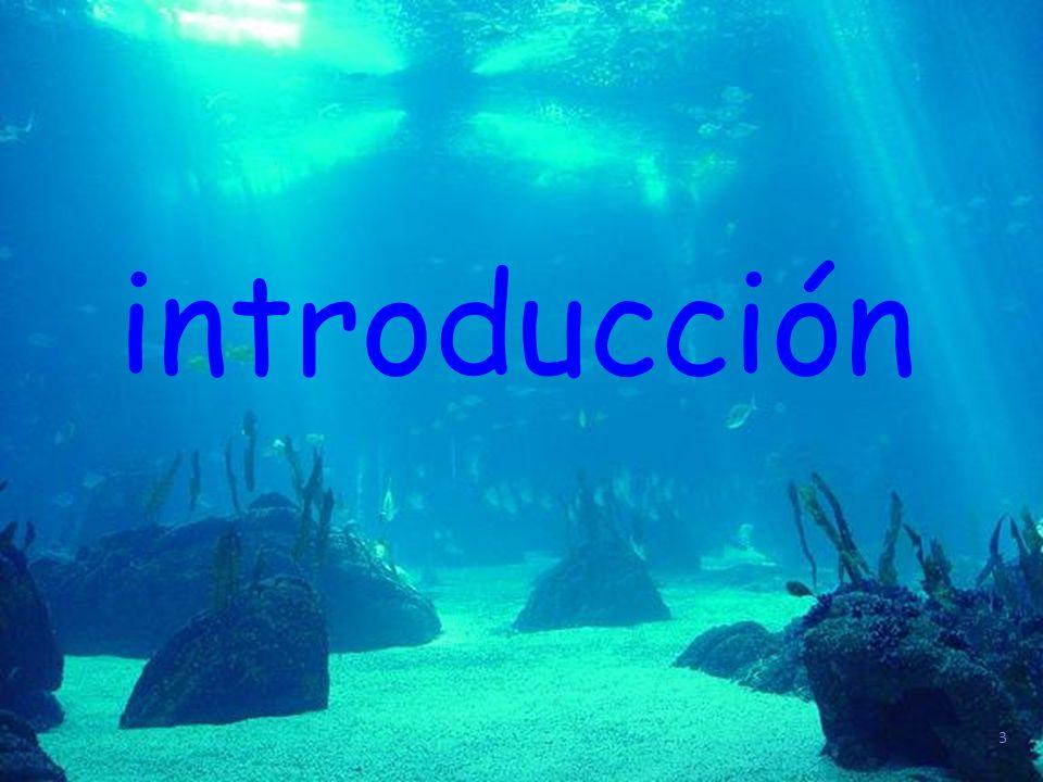 3 introducción