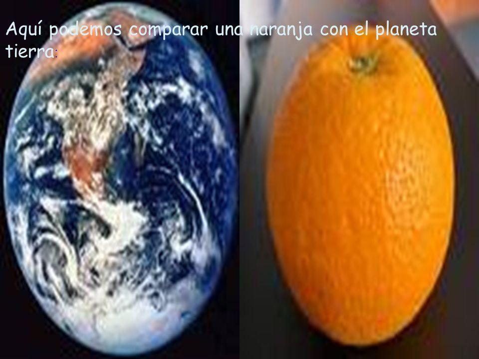 4 Aquí podemos comparar una naranja con el planeta tierra :