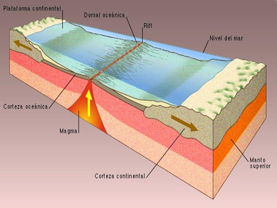La corteza oceánica la corteza oceánica es la capa que hay en el fondo del océano.
