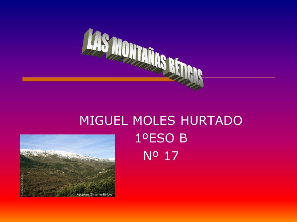 MIGUEL MOLES HURTADO 1ºESO B Nº 17