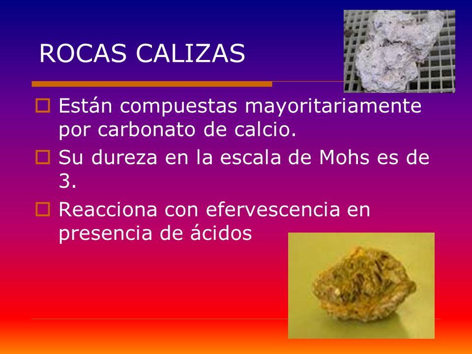 ROCAS CALIZAS Están compuestas mayoritariamente por carbonato de calcio. Su dureza en la escala de Mohs es de 3. Reacciona con efervescencia en presen