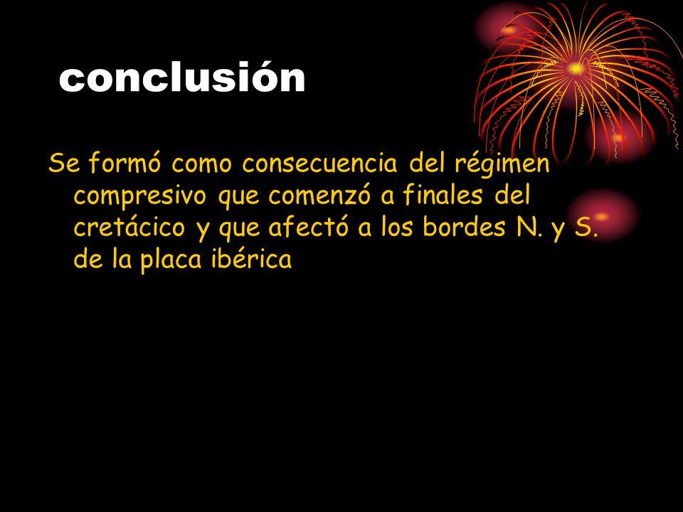 conclusión Se formó como consecuencia del régimen compresivo que comenzó a finales del cretácico y que afectó a los bordes N. y S. de la placa ibérica