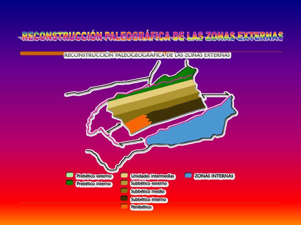 conclusión Se extienden desde el Golfo de Cádiz hasta las costas meridionales del País Valenciano y Baleares.