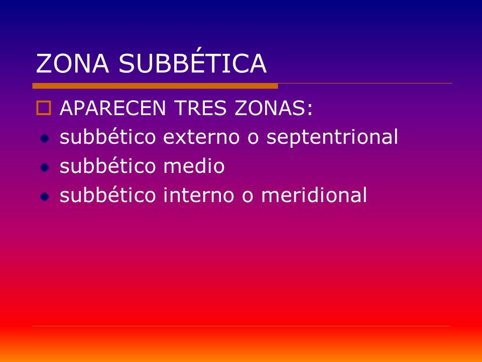 ZONA SUBBÉTICA APARECEN TRES ZONAS: subbético externo o septentrional subbético medio subbético interno o meridional