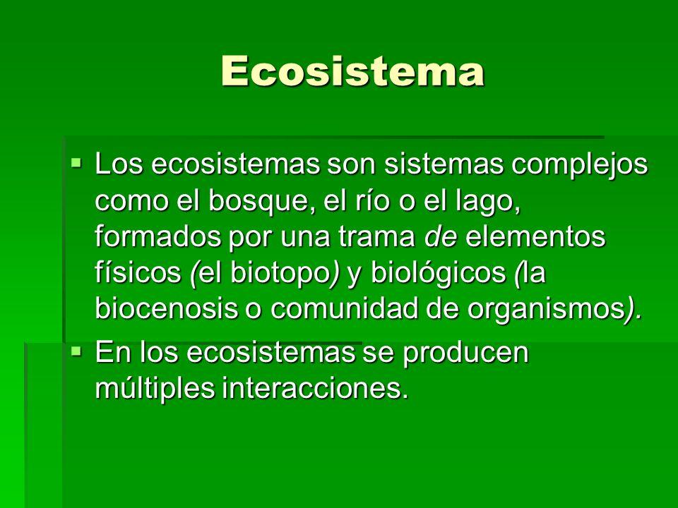 Ecosistema Ecosistema Los ecosistemas son sistemas complejos como el bosque, el río o el lago, formados por una trama de elementos físicos (el biotopo