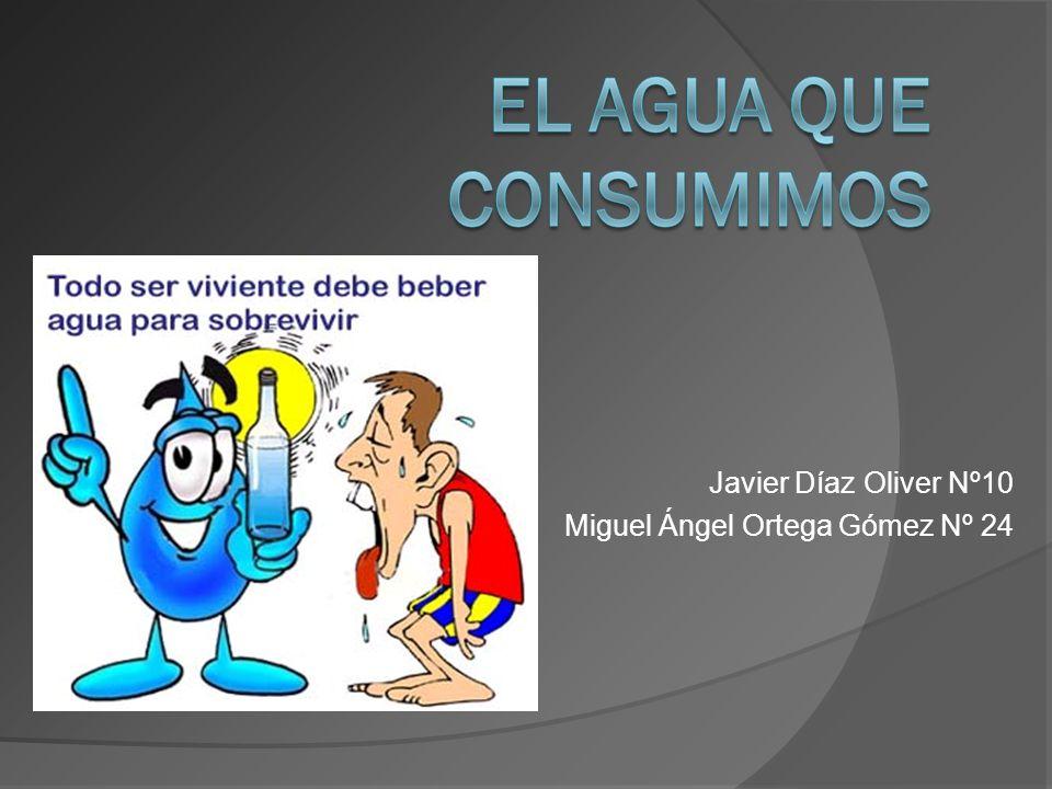 Javier Díaz Oliver Nº10 Miguel Ángel Ortega Gómez Nº 24