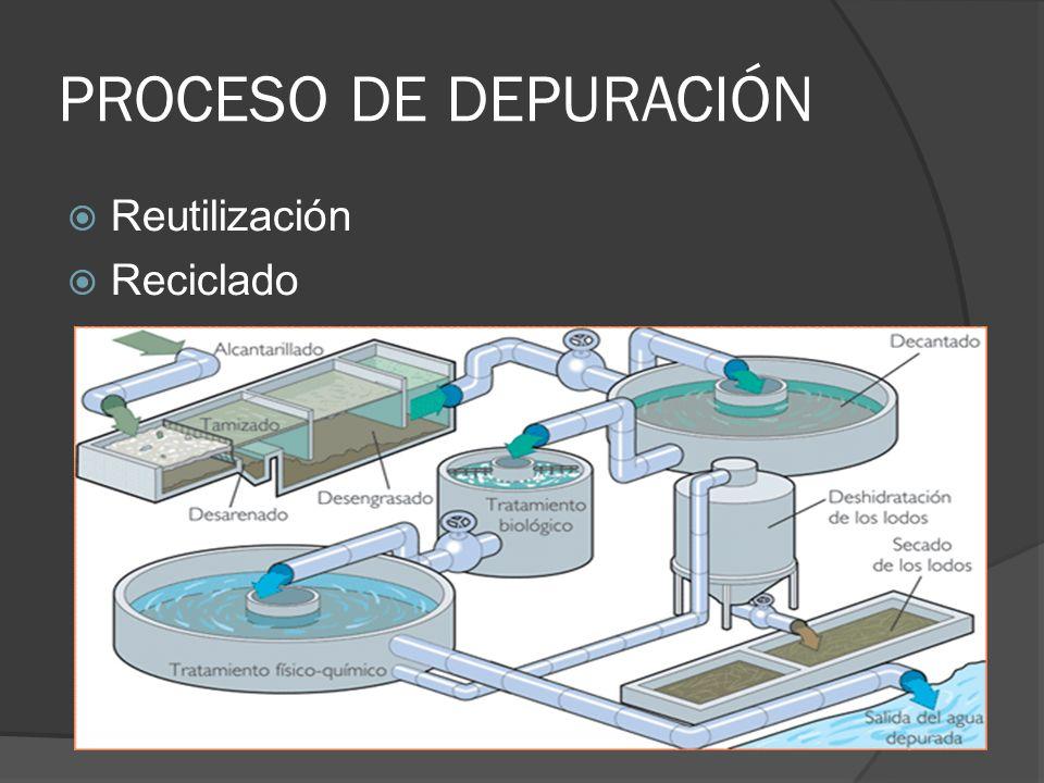 ESQUEMA El agua que consumimos embalses acuíferos P.