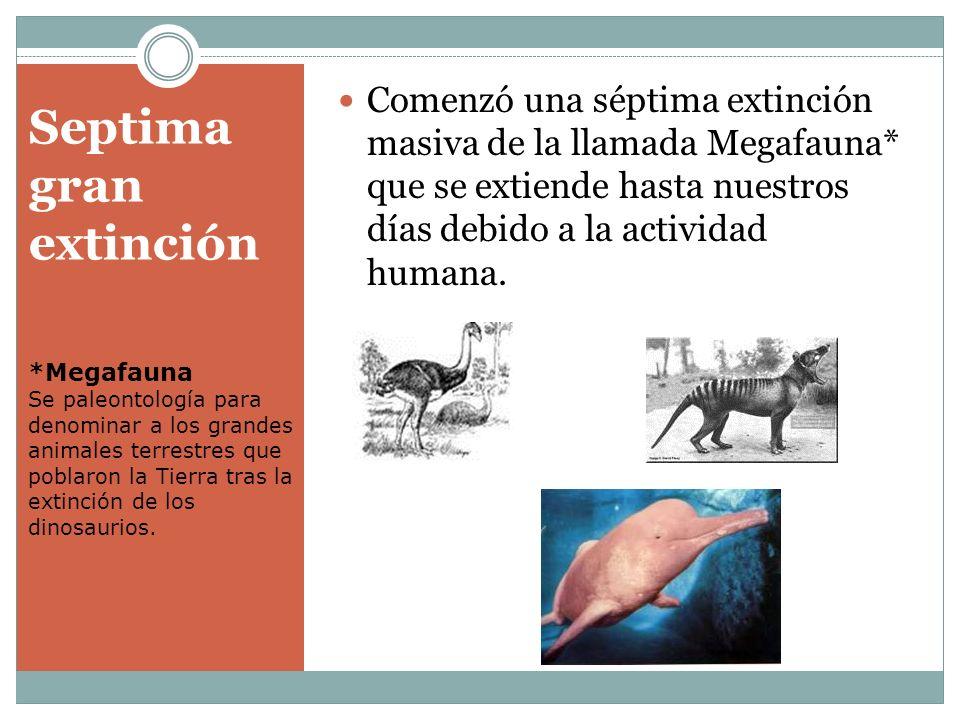Septima gran extinción Comenzó una séptima extinción masiva de la llamada Megafauna* que se extiende hasta nuestros días debido a la actividad humana.