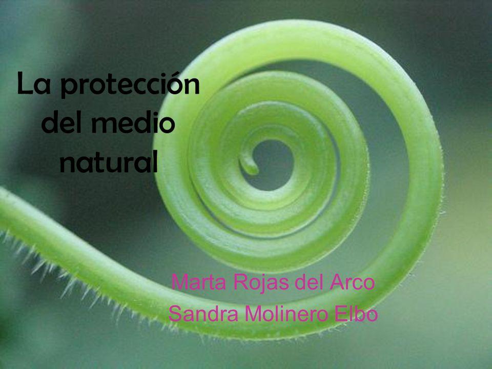 La protección del medio natural Marta Rojas del Arco Sandra Molinero Elbo
