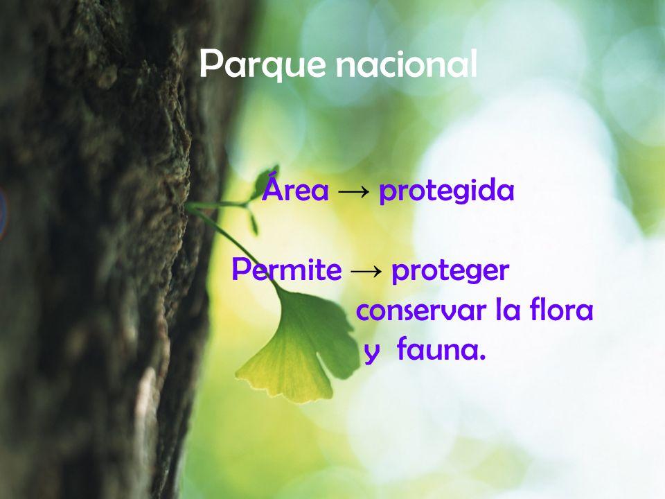 Parque nacional Área protegida Permite proteger conservar la flora y fauna.