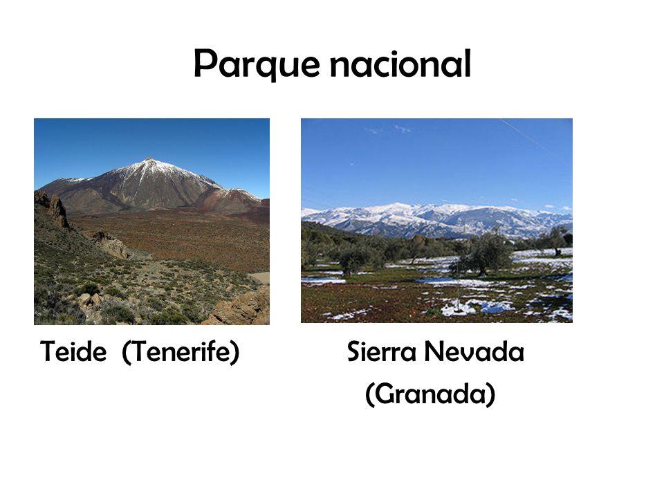 Parque nacional Teide (Tenerife) Sierra Nevada (Granada)