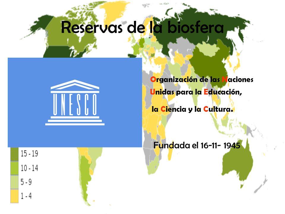 Reservas de la biosfera Organización de las Naciones Unidas para la Educación, la Ciencia y la Cultura. Fundada el 16-11- 1945