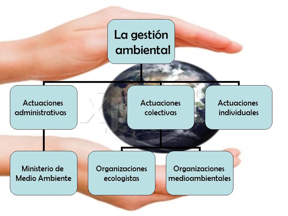La gestión ambiental Actuaciones administrativas Ministerio de Medio Ambiente Actuaciones colectivas Organizaciones ecologistas Organizaciones medioam