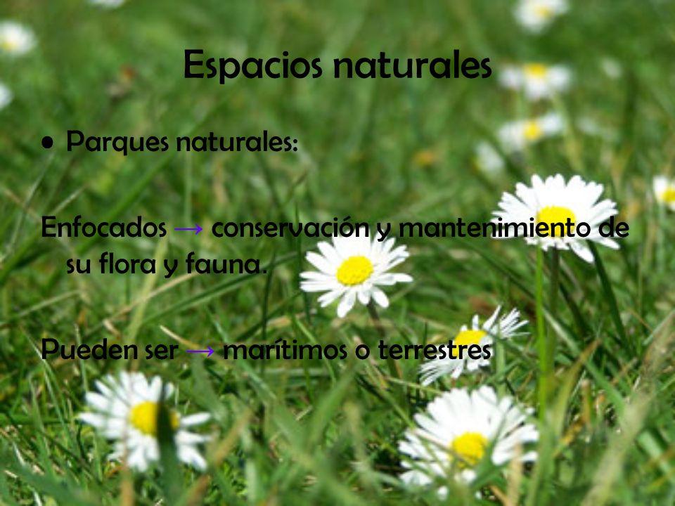 Espacios naturales Parques naturales: Enfocados conservación y mantenimiento de su flora y fauna. Pueden ser marítimos o terrestres