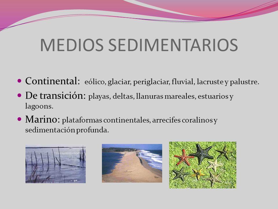 MEDIOS SEDIMENTARIOS Continental: eólico, glaciar, periglaciar, fluvial, lacruste y palustre. De transición: playas, deltas, llanuras mareales, estuar
