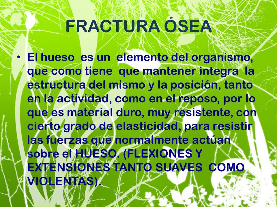 FRACTURA ÓSEA El hueso es un elemento del organismo, que como tiene que mantener integra la estructura del mismo y la posición, tanto en la actividad,