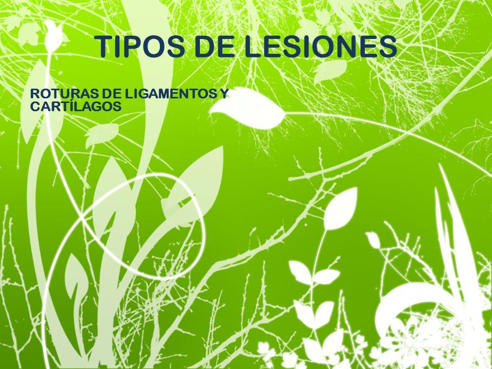 TIPOS DE LESIONES ROTURAS DE LIGAMENTOS Y CARTÍLAGOS