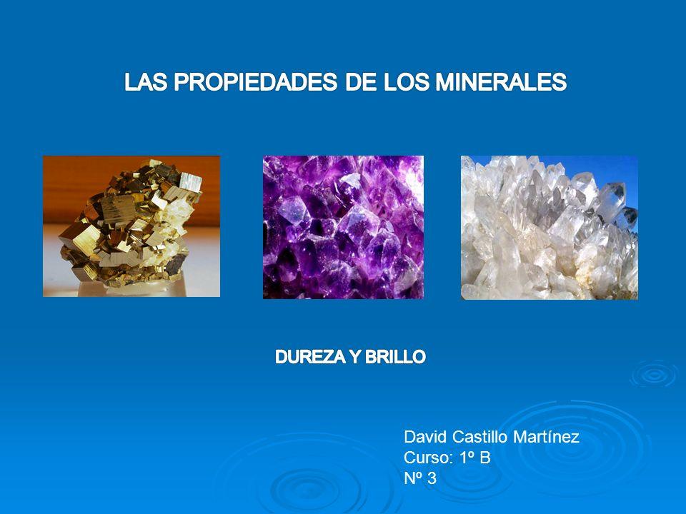 David Castillo Martínez Curso: 1º B Nº 3