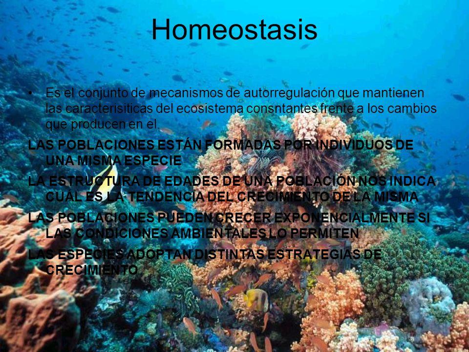 Homeostasis Es el conjunto de mecanismos de autorregulación que mantienen las caracterisiticas del ecosistema consntantes frente a los cambios que pro