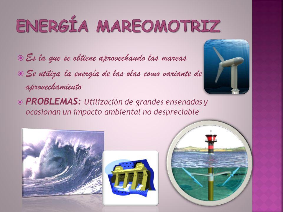 Es la que se obtiene aprovechando las mareas Se utiliza la energía de las olas como variante de aprovechamiento PROBLEMAS: Utilización de grandes ense
