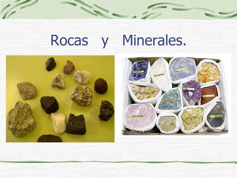 Bibliografía. Libro de naturales. Wikipedia Otras páginas. - Maravilla Alonso Ubago.