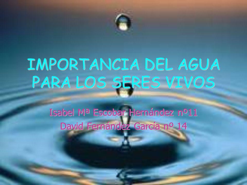 ÍNDICE 1-.El agua es un buen disolvente. 2-. El agua regula la temperatura del medio.