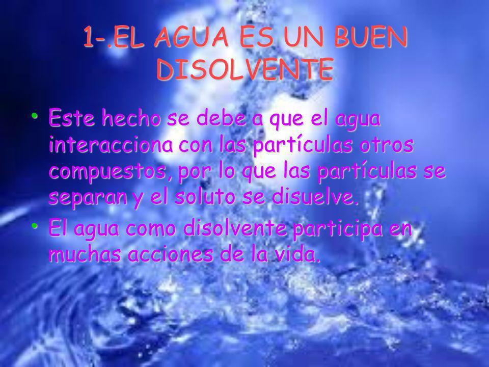 1-.EL AGUA ES UN BUEN DISOLVENTE Este hecho se debe a que el agua interacciona con las partículas otros compuestos, por lo que las partículas se separan y el soluto se disuelve.