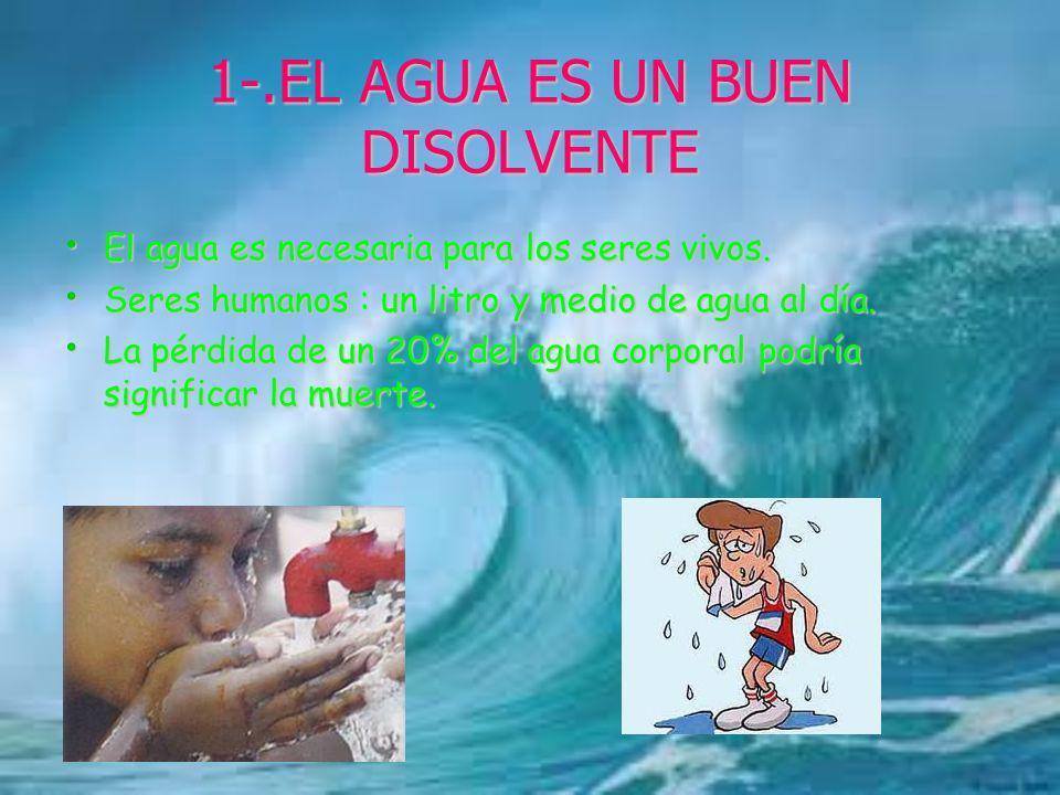 1-.EL AGUA ES UN BUEN DISOLVENTE El agua es necesaria para los seres vivos. El agua es necesaria para los seres vivos. Seres humanos : un litro y medi