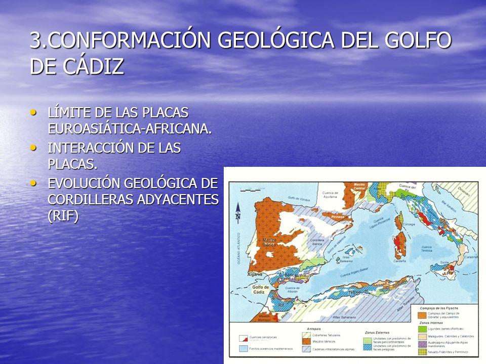 3.CONFORMACIÓN GEOLÓGICA DEL GOLFO DE CÁDIZ LÍMITE DE LAS PLACAS EUROASIÁTICA-AFRICANA. LÍMITE DE LAS PLACAS EUROASIÁTICA-AFRICANA. INTERACCIÓN DE LAS