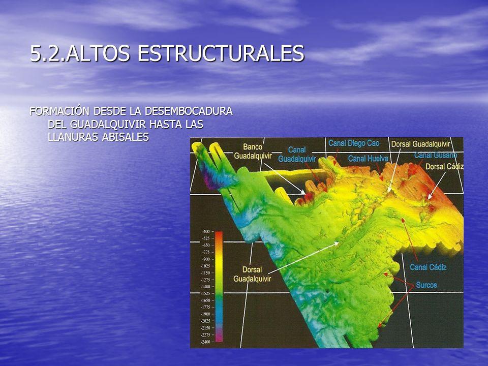 5.2.ALTOS ESTRUCTURALES FORMACIÓN DESDE LA DESEMBOCADURA DEL GUADALQUIVIR HASTA LAS LLANURAS ABISALES