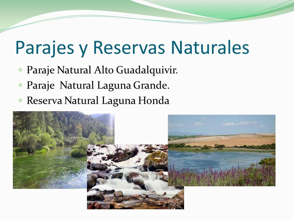 Parajes y Reservas Naturales Paraje Natural Alto Guadalquivir. Paraje Natural Laguna Grande. Reserva Natural Laguna Honda