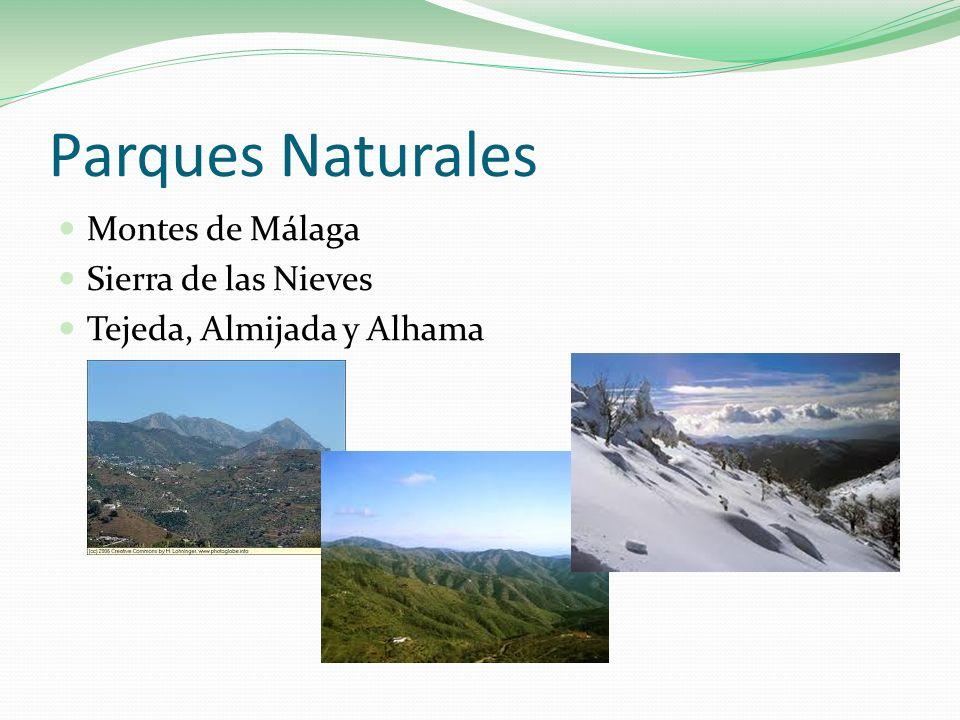 Parques Naturales Montes de Málaga Sierra de las Nieves Tejeda, Almijada y Alhama