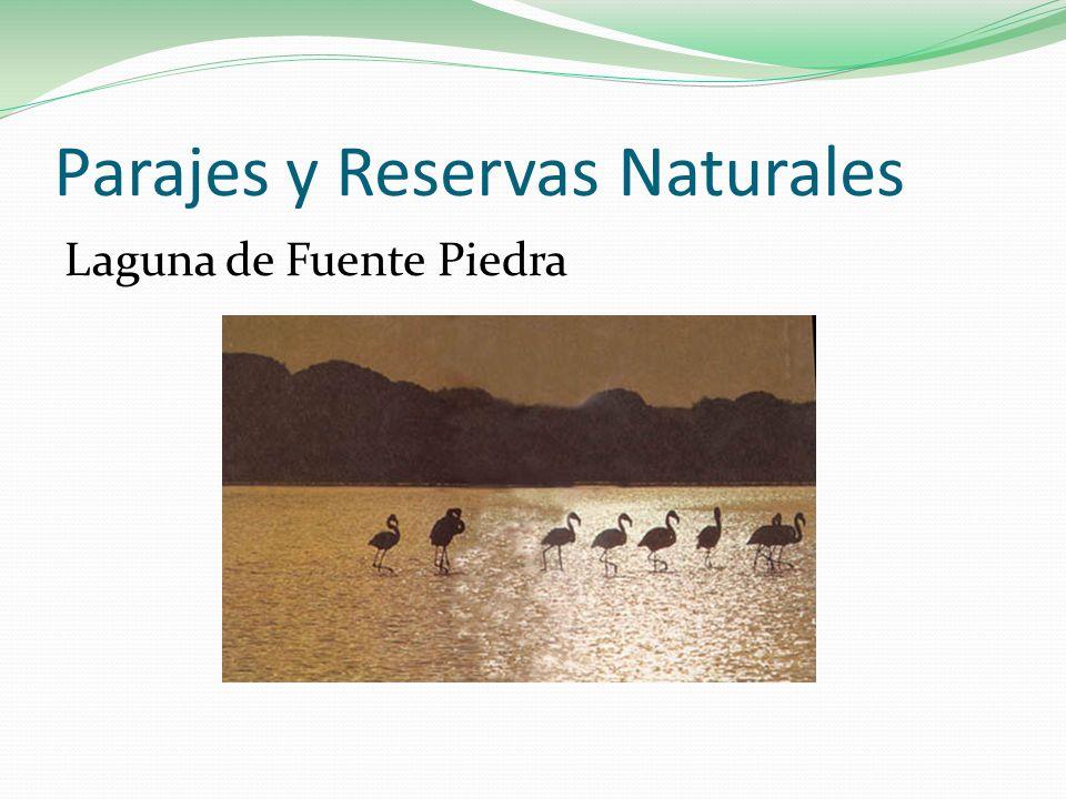 Parajes y Reservas Naturales Laguna de Fuente Piedra