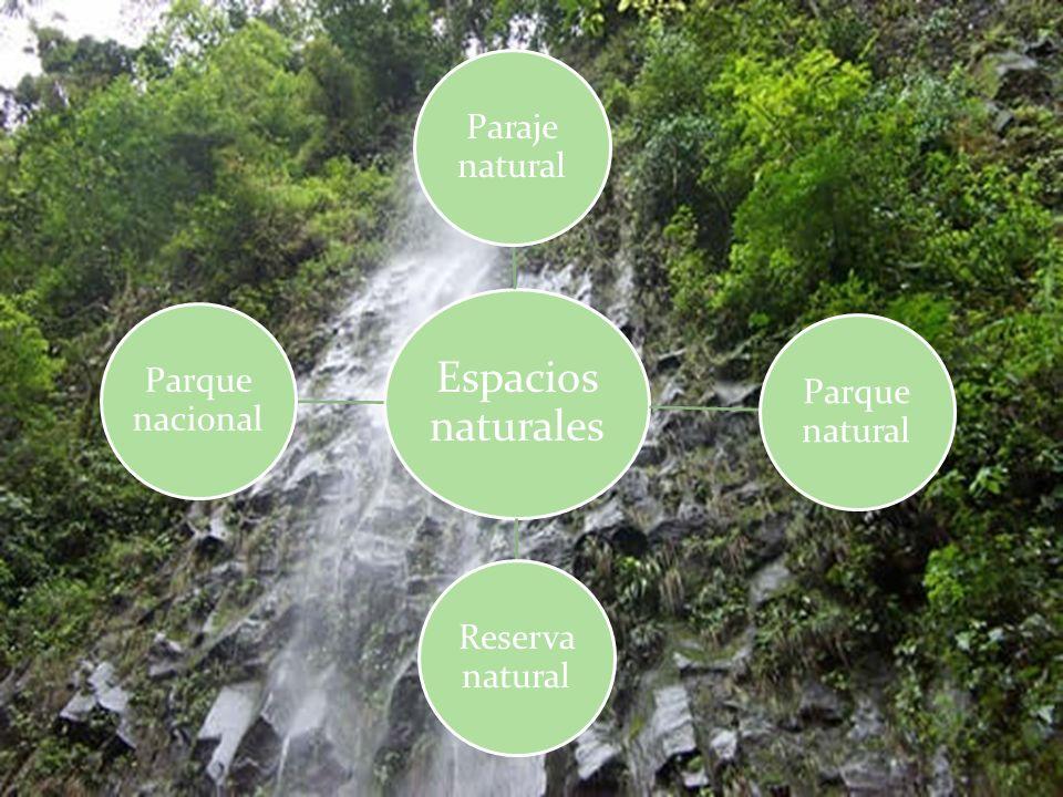 Espacios naturales Paraje natural Parque natural Reserva natural Parque nacional