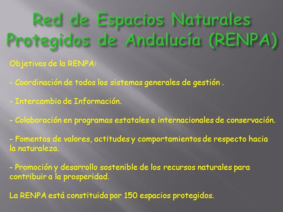 Objetivos de la RENPA: - Coordinación de todos los sistemas generales de gestión.