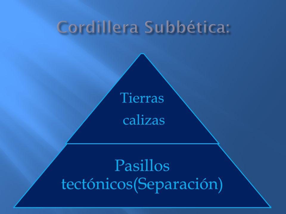 9 Tierras calizas Pasillos tectónicos(Separación)