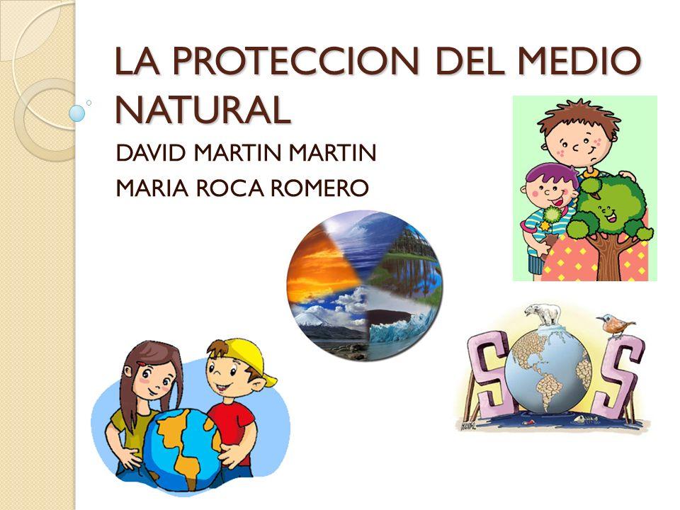LA PROTECCION DEL MEDIO NATURAL DAVID MARTIN MARTIN MARIA ROCA ROMERO
