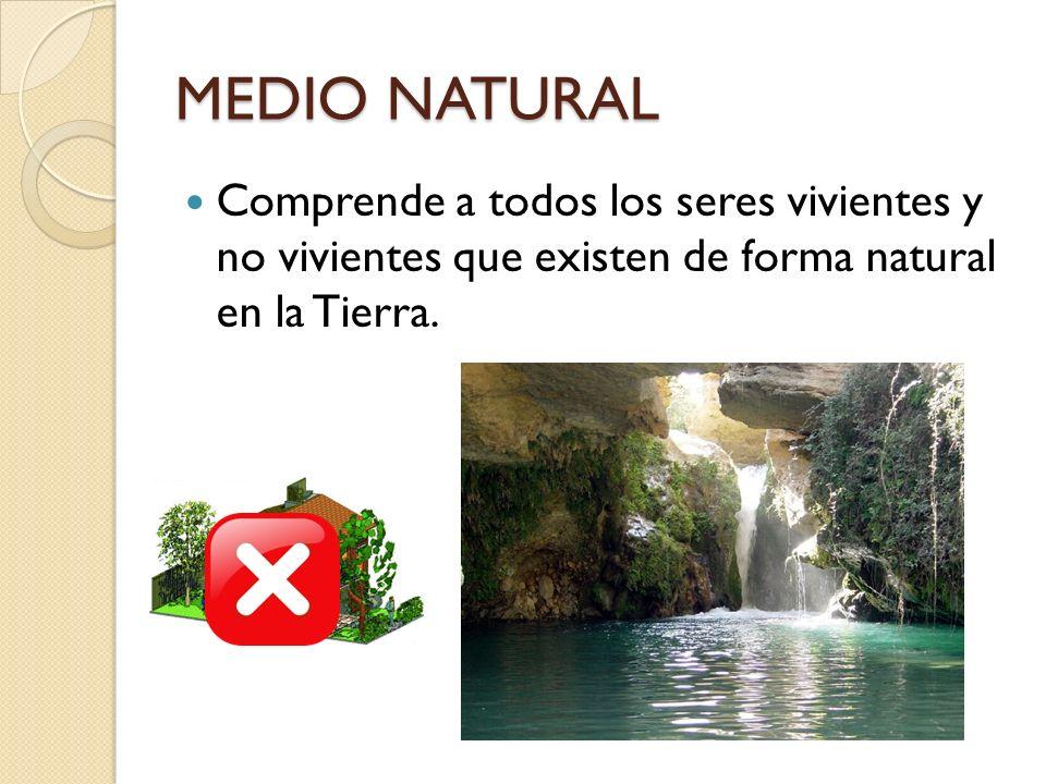 MEDIO NATURAL Comprende a todos los seres vivientes y no vivientes que existen de forma natural en la Tierra.