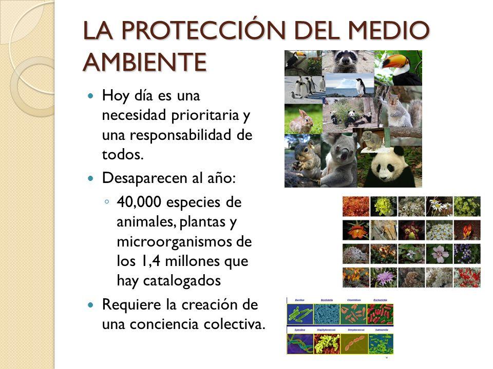 LA PROTECCIÓN DEL MEDIO AMBIENTE Hoy día es una necesidad prioritaria y una responsabilidad de todos. Desaparecen al año: 40,000 especies de animales,