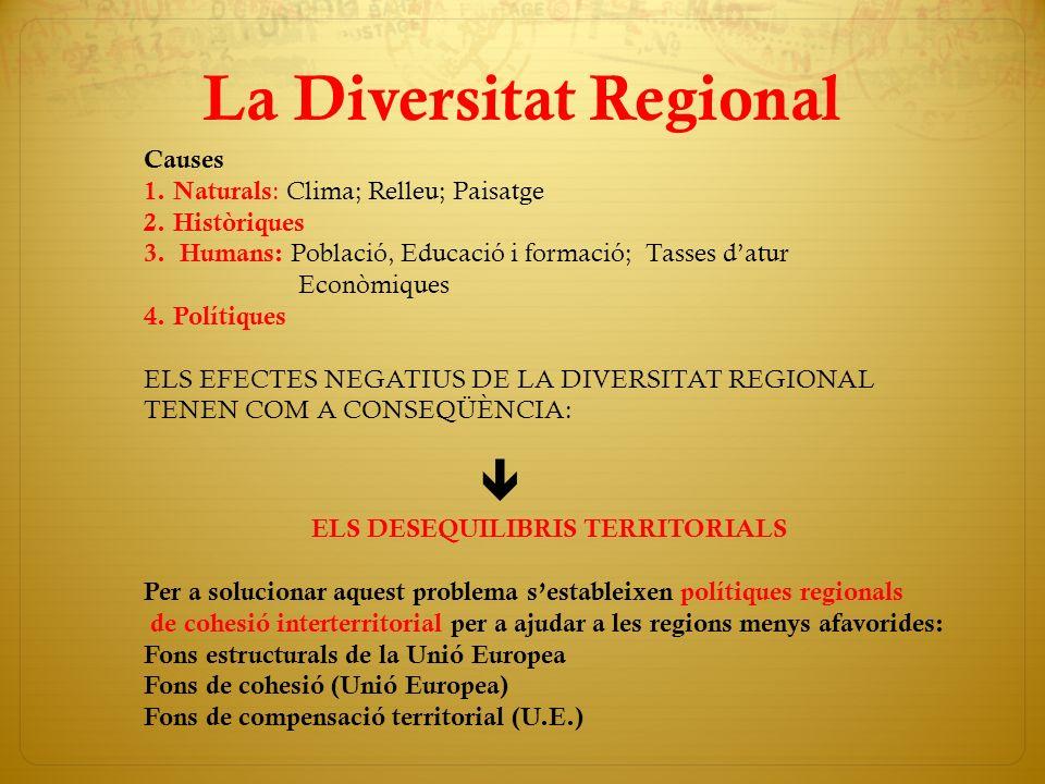 La Diversitat Regional Causes 1. Naturals : Clima; Relleu; Paisatge 2. Històriques 3. Humans: Població, Educació i formació; Tasses datur Econòmiques