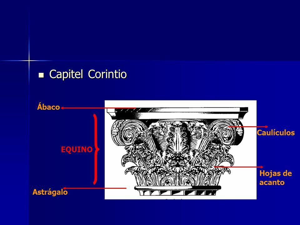 Capitel Corintio Capitel Corintio Ábaco Astrágalo EQUINO Caulículos Hojas de acanto